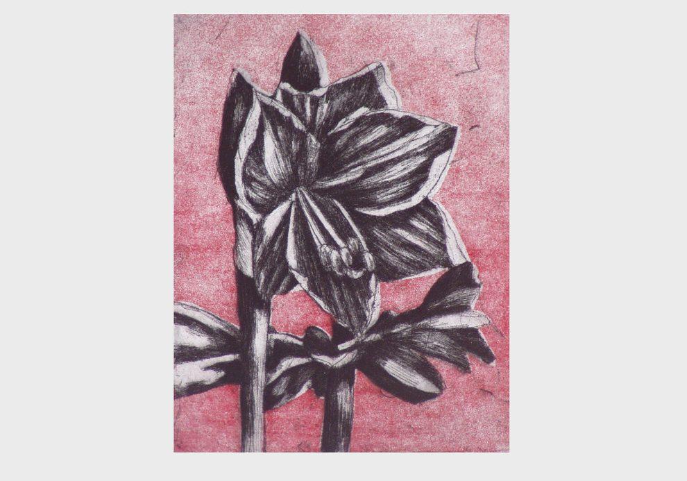 Blüten schwarz, Radierung rot
