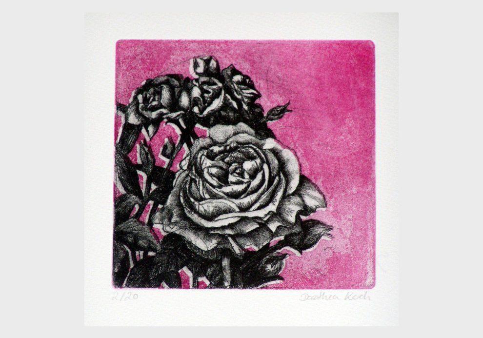Farbradierung Rose
